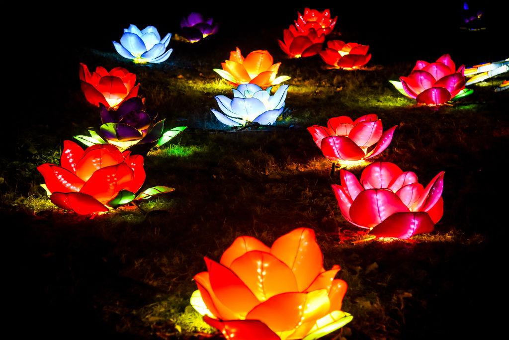 У предвечерје кинеске Нове године отворен фестивал светлости у Новом Саду